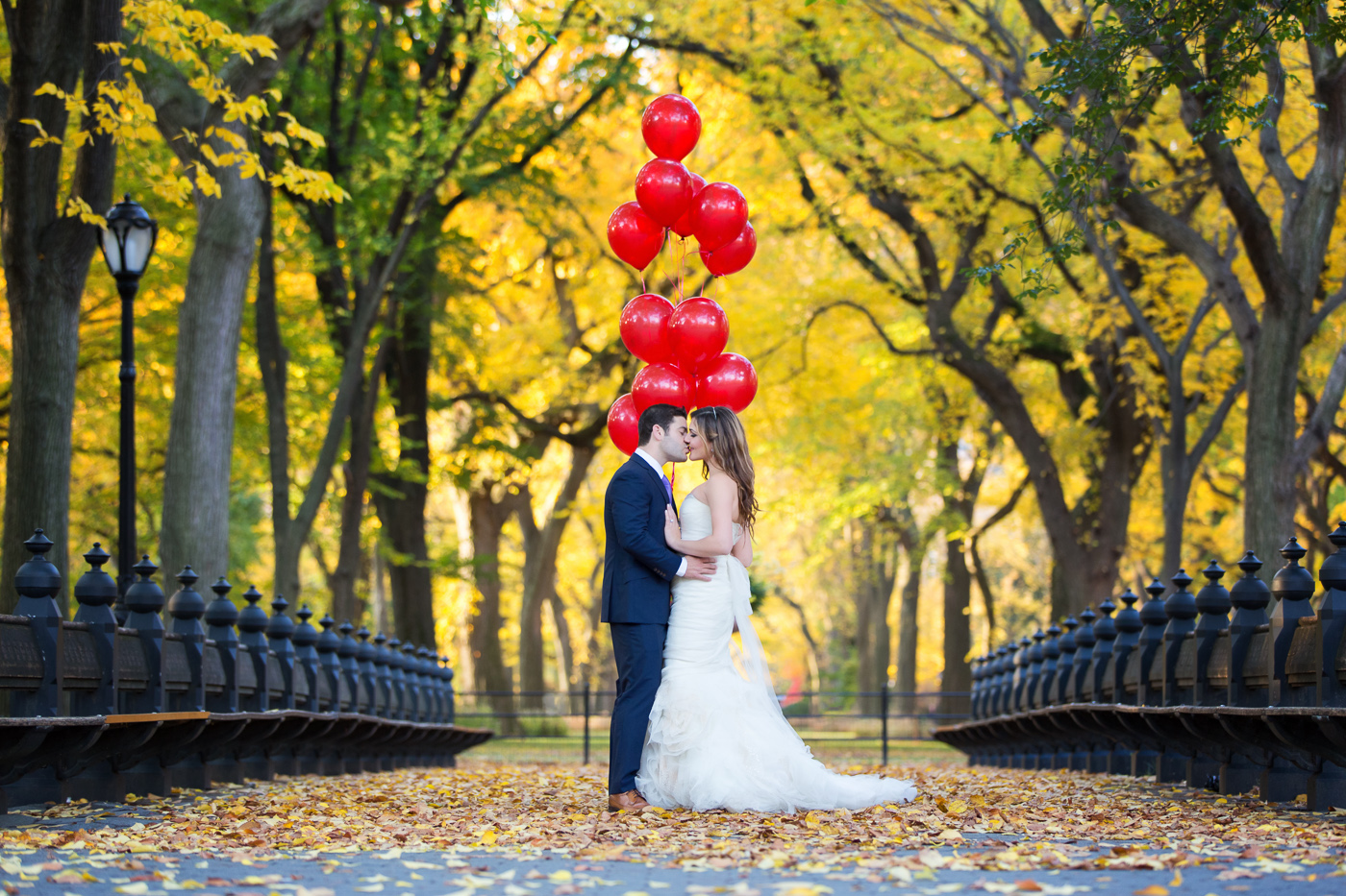 Post-Wedding Shoot_New York City_Central Park_Photography